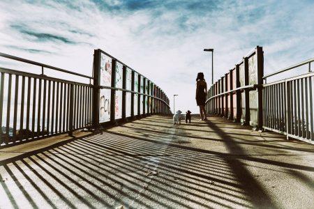 Ruf der Wildnis Katja Gehrung ART Photography